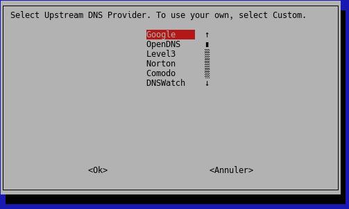 Dns provider Pi-hole